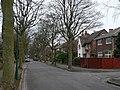 Carisbrooke Drive - geograph.org.uk - 1211604.jpg