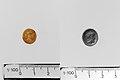 Carnelian ring stone MET DP141701 DP141702.jpg