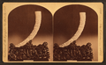 Carved elephant's tusk. Supported on ebony pedestal, eleborately carved in human figures, trees, etc. Modern Chinese. (Front and rear view.), from Robert N. Dennis collection of stereoscopic views.png