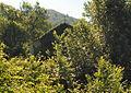 Cassinelle 2008-1.jpg