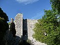 Castello di Porciano - panoramio.jpg