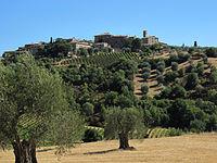 Castelnuovo dell'abate, veduta.JPG