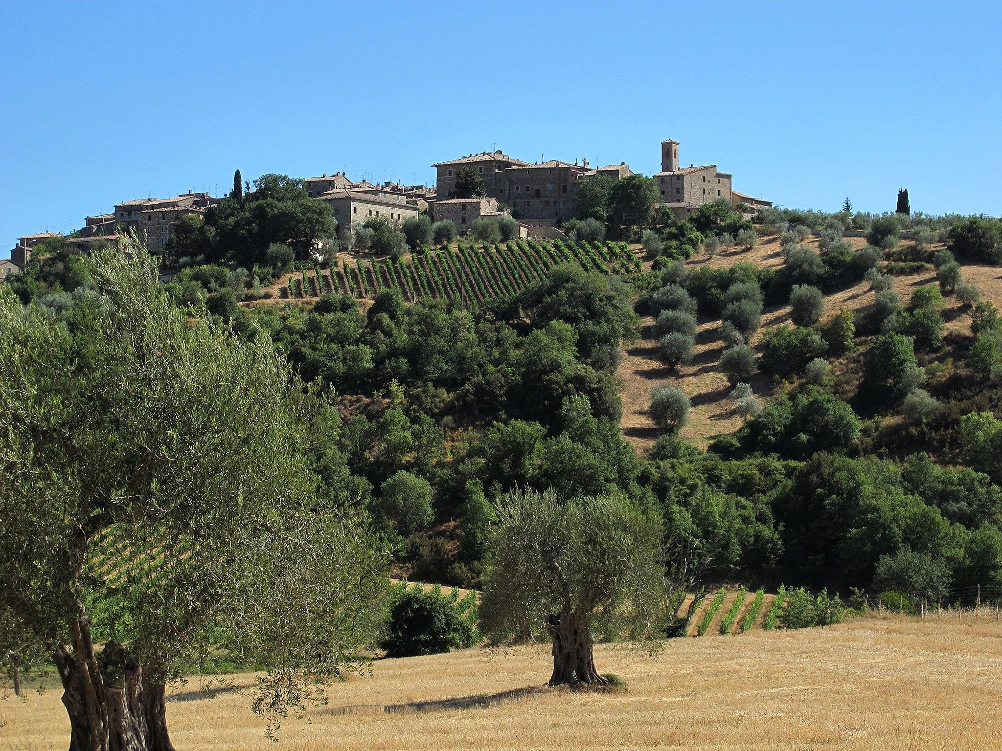 Castelnuovo dell'abate, veduta da Sant'Antimo