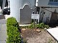 Ccpinckney grave.JPG