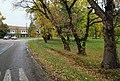 Centralni park u Banatskom Despotovcu.jpg