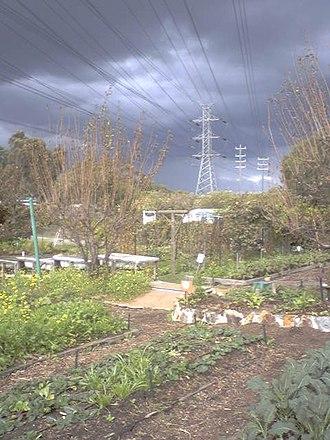 CERES Community Environment Park - Image: Ceres env pk honey lane storm