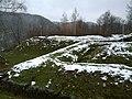 Cetatea Costesti iarna.jpg