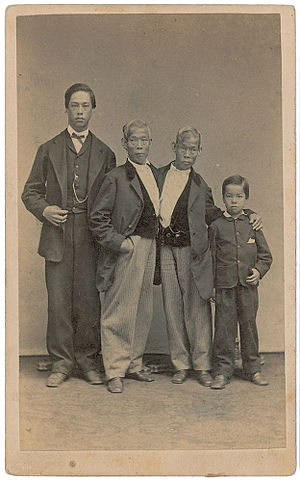 Chang,Eng,andSons(c.1865-1870)