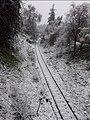 Chemin de fer, la wilaya de tlemcen.jpg