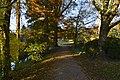 Chemin ombrage le long du Dirkbeek (22303138084).jpg
