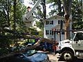 Cherry Picker Over Downed Tree (7509738630).jpg