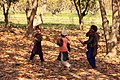 Children taking wood to their home.jpg