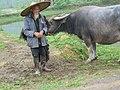 China (1350198809).jpg