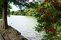 Chuanzitou River 船子頭溪 - panoramio.jpg