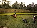 Ciblonan Drijing, Hulu Sungai Kranji, Purwokerto.jpg