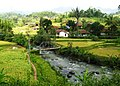 Citalem, Cipongkor, West Bandung Regency, West Java, Indonesia - panoramio (10).jpg