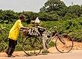 City sugarcane.jpg
