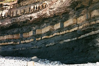 Sinemurian - Jurassic rock strata in the cliffs at East Quantoxhead, near the Sinemurian golden spike.