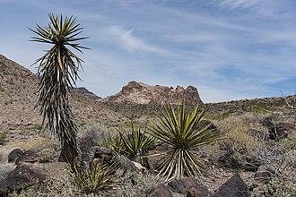 Clipper Mountain Wilderness - Image: Clipper Mountain Wilderness (29350765628)