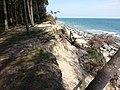 Coastal erosion courtown co wexford aug13 2015.jpg