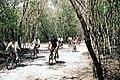 Cobá Vélo 023.jpg