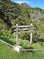 Col des Bœufs, La Réunion 3.JPG