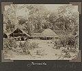 Collectie NMvWereldculturen, RV-A102-1-163, 'Jamaike'. Foto- G.M. Versteeg, 1903-1904.jpg