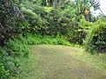 Colophanes Trail (4823290679).jpg