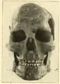 Combe capelle Smithsonian 1909.png