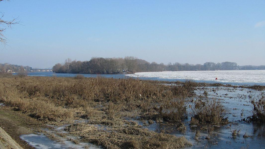 La confluence de la Maine et de la Loire à Bouchemaine dans le Maine-et-Loire, en hiver, la Loire gelée.