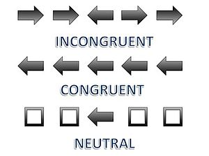 Eriksen flanker task - Incongruent, congruent, and neutral stimuli represented by arrows. This is what a participant may see in a standard Eriksen Flanker Task