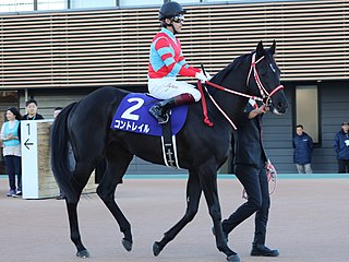 Contrail (horse) Japanese Thoroughbred racehorse