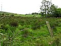 Coolnacolpagh Townland - geograph.org.uk - 435091.jpg