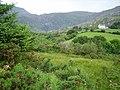 Coomgira - geograph.org.uk - 263806.jpg