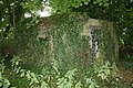 Covered in ivy - geograph.org.uk - 939163.jpg