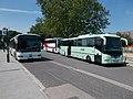 Credo buszok (NVF-217 és MNY-554), 2019 Siófok.jpg