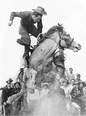 Australian rodeo - Alan Wood on the great bucking mare, Curio. Photo taken shortly before Alan regained his seat and went on to make the required time.