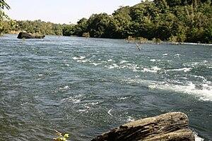 Kali River rapids in Dandeli