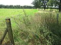 Darenth Valley Path towards Chipstead - geograph.org.uk - 1450209.jpg