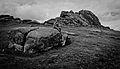 Dartmoor - Haytor Rocks (6238310553).jpg