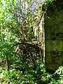 Davies o'the Mill ruins, long view.jpg