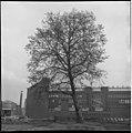 De achterzijde van de Rotterdamsche bank bij de voormalige plaats van het Coolsingelziekenhuis 1963.jpg