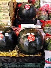 Densuke Wassermelone