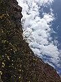 Deqen, Yunnan, China - panoramio (57).jpg
