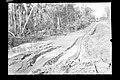 Deslizamento de Trilhos Ocasionado Pelas Chuvas na Região - 619, Acervo do Museu Paulista da USP.jpg