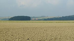 Kolindsund - The central part of Kolindsund lies about 2.4 meters below sea level on average, and is fertile farmland.