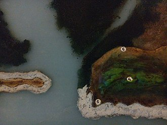Breach Candy - Image: Diorama of Breach Candy area of pre Colonial Bombay, marking grove of kamal (giving Cumbala Hill its name) (4); shrine of Mahalaxmi, Mahasaraswati, and Mahakali (5; and brab trees (6), from the Dr Bhau Daji Lad Museum, Mumbai