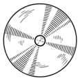 Disk (PSF).png