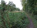Disused Canal - geograph.org.uk - 1539287.jpg