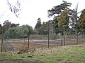 Disused tennis courts, Wroxall Abbey - geograph.org.uk - 1775908.jpg